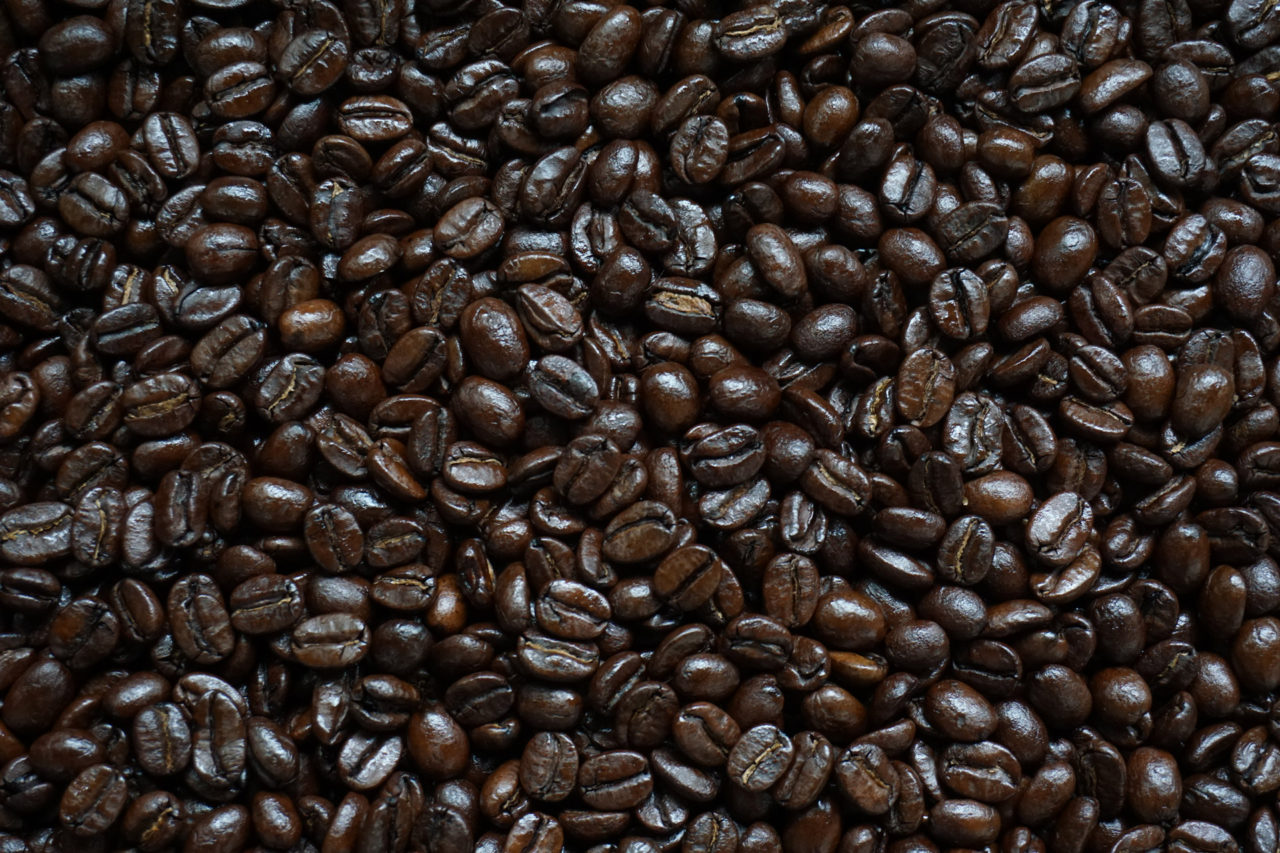 高松市 レガロビズ コーヒー豆 カフェ 販売